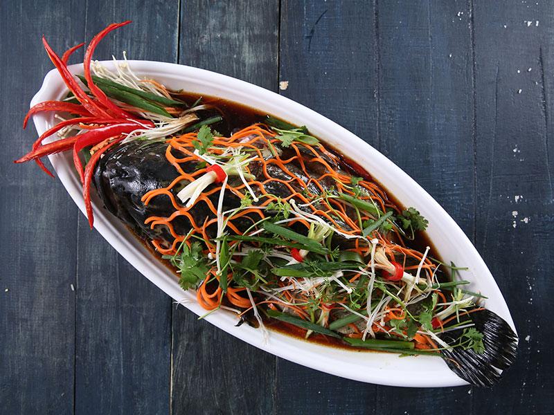 Cá song hấp xì dầu – Món ăn được ưa chuộng cho mùa đặt tiệc cuối năm